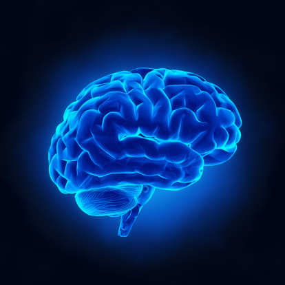 Eight Lifestyle Habits that Can Optimize Brain Function