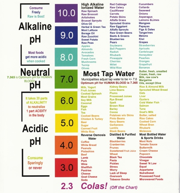 alkaline-foods-mn-ethanwise-consulting