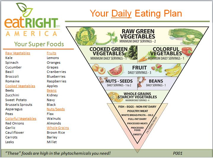 daily-eating-planner-coach-health-consult-coach-mn