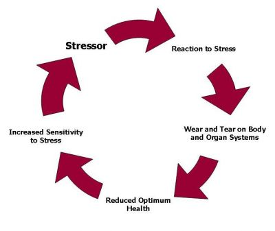 chronic-stress-cycle