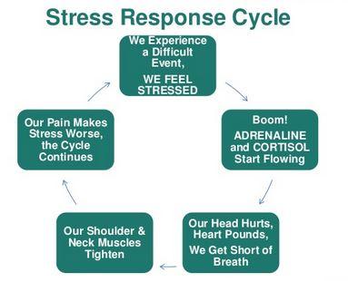 stress-sycle