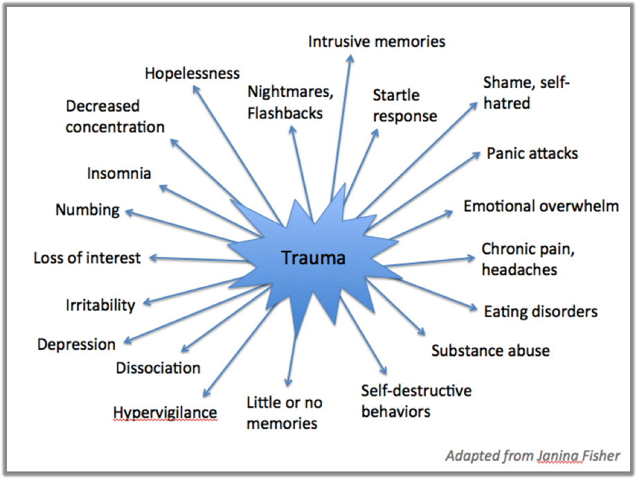 trauma-trama-healing-minnesota-wise