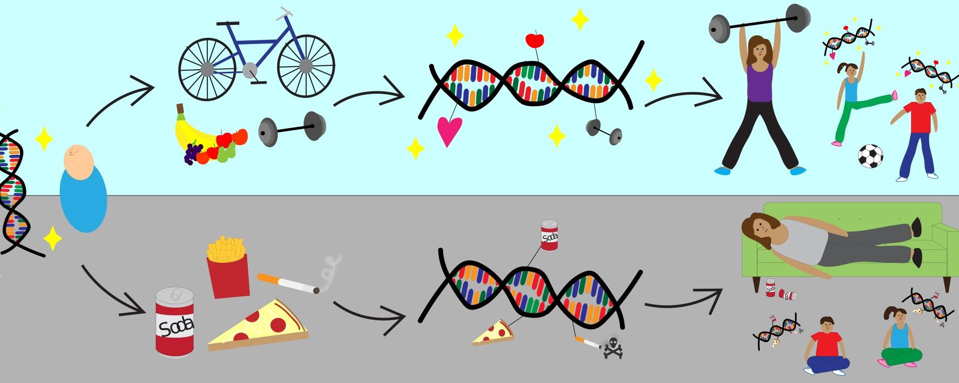 Epigenetics-for-healing-USA